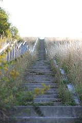 Stairway to Heaven (Sven Bonorden) Tags: stairs treppe stairway deusenberg huckarde dortmund ruhrgebiet westfalen halde treppengeländer gegenlicht deusen