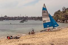 Beach Acrobat (armct) Tags: sydney harbour beach sand yacht sailboat hobie catamaran hobie16 kayak view recreation play acrobat children kids fun skyline bay quarantine boats cliff