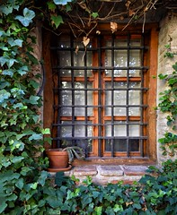 Window (Jocelyn777) Tags: windows grille iron stone bricks plants foliage houses building architecture historictowns towns historicsites toledo spain travel