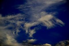 Cirrus 2. (Photolove2017) Tags: canada colors clouds cirrus sky nikondx nikon d3100 evening tiaphoto photolove2018 blue plane fly