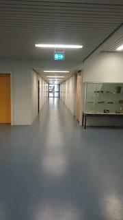 Sindelfingen: Gottlieb-Daimler-Schule I - 11.07.2017