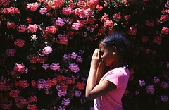 My Favorite Little Person/Artist (juliarholcomb) Tags: film 35mm kodakektachrome kodak 64t crossprocessed expiredfilm olympusom flowers portrait california oakland photowalk grain