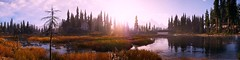 """""""Nature never goes out of style."""" (Xenolith3D) Tags: far cry 5 nature screenshot panorama morning sun harmony peaceful colorful grass water tree flower wood forest landscape hope county field sky ubisoft"""