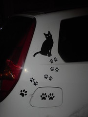 1350 (en-ri) Tags: gatto cat nero sticker adesivo sony sonysti little paws zampette auto car automobile