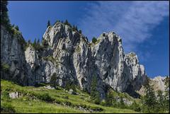 _SG_2018_07_9021_IMG_8558 (_SG_) Tags: schweiz suisse switzerland daytrip tour pilatus alpnachstadt mountain berg peak view lucerne central tomlishorn railway station cogwheel gondola cableway kriens esel oberhaupt dragon lake cog