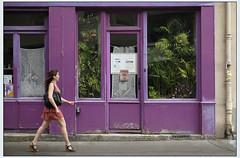 La forêt dans la boutique 2 (afantelin) Tags: iledefrance paris14è plante femme passante violet boutique vitrine dentelle rideaux rue trottoir