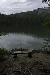 _DSC6300 (DDPhotographie) Tags: cz eu europe cernejezero czechia czeck lac lake landscpae natural nature parcnaturel park payage plzen sumava zeleznaruda tchéquie républiquetchèque železnáruda plzeňskýkraj