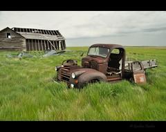 thru and thru (Gordon Hunter) Tags: old truck barn shed shop building decay derelict abandoned gmc pickup rust door grass field prairies rural country grey gray overcast cloudy summer farm ab alberta canada gordon hunter nikon d5000