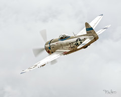 """Ross Granley piloting the Flying Heritage & Combat Armor Museum 1945 Republic P-47D Thunderbolt """"Tallahassee Lassie"""" at the 2018 Arlington Fly-In (Hawg Wild Photography) Tags: ross granley paulgallen terrygreen wwii fighter arlingtonmunicipalairportkawo 2018 arlington flyin fly in air show hawg wild photgraphy flying heritage combat armor museum 1945 republic p47d thunderbolt tallahasseelassie nx7159z n7159z"""