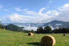 DSC_3834 (mélanie mathevon (mystery)) Tags: été foin campagne ardeche summer paysage brume brouillard arbre montagnes enjoy