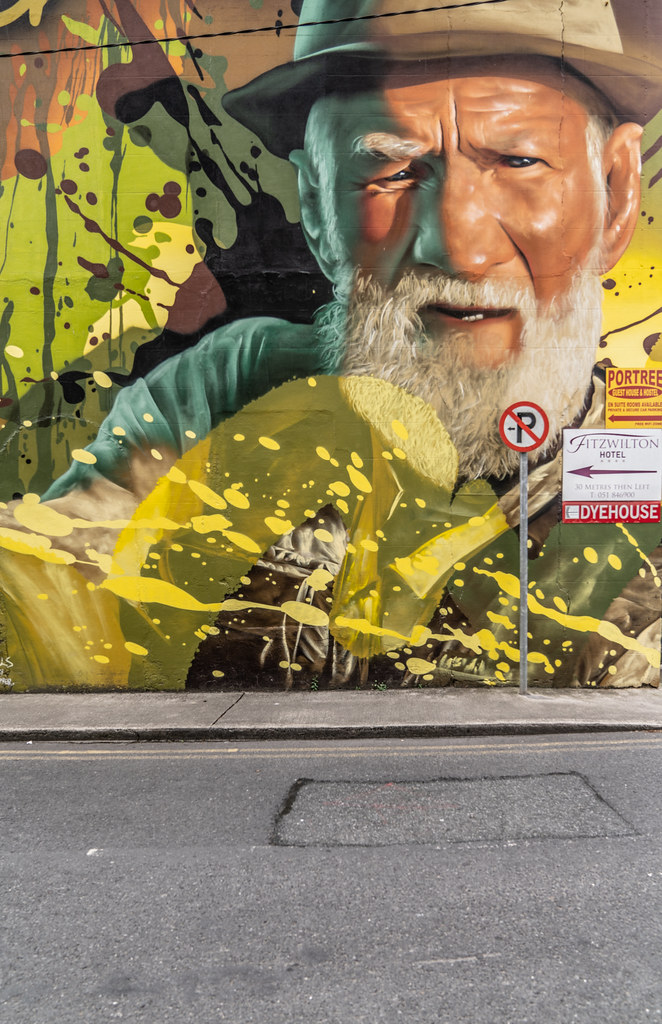 EXAMPLES OF STREET ART [URBAN CULTURE IN WATERFORD CITY]-142315