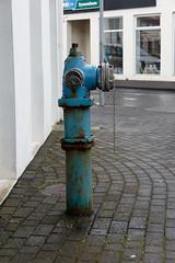 20180712-_BUD3509 In Town 09 (hirschwrites) Tags: earth europe firehydrant heimaey iceland other vestmannaeyjarbær