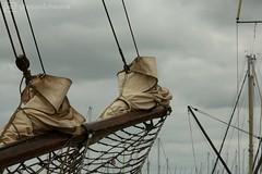 sail 2 (photos4dreams) Tags: transport transportation photos4dreams p4d photos4dreamz norddeutschland ostsee kappeln balticsea sailing sail ship boot segelboot