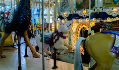 DSC05090 (jhallen59) Tags: ocnj maryland md boardwalk carousel