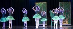 DJT_6707 (David J. Thomas) Tags: northarkansasdancetheatre nadt dance ballet jazz tap hiphop recital gala routines girls women southsidehighschool southside batesville arkansas costumes wizardofoz