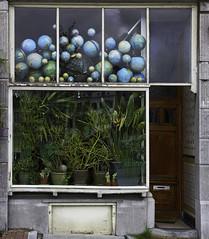 Globes (JLM62380) Tags: amsterdam netherlands globes windows earth mappemonde world monde plants door street rue atypique façade