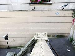 Banksy or not Banksy (YOUGUIE) Tags: banksy streetart streetartparis banksyornotbanksy banksyinparis