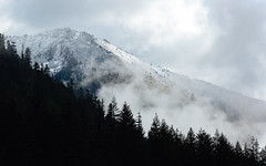 Find Your Way (John Westrock) Tags: mountain trees nature landscape clouds cloudy overcast snoqualmiepass pacificnorthwest washingtonstate canoneos5dmarkiii canon135mmf2lusm