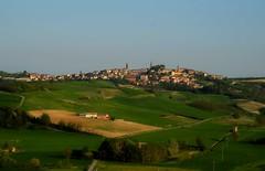 ma quanti verdi esistono al mondo? (balenafranca) Tags: lumonferrato piemonte italia italy campagna countryside colline hills primavera springtime