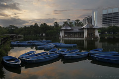 台中公園湖心亭 (wii025) Tags: fujifilm xt2 xf1024 sunrise landscapes 台中湖心亭 湖心亭 台中 日曜天地