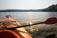 Morning paddle in the land of lakes (beyondhue) Tags: kayak paddle lake ontario summer beyindhue water sun reflection ray canada recreation horizon woods tree
