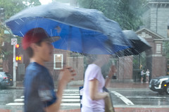 Rainy Day (BimalNepal) Tags: bimalnepal bimalnepalphotographer cambma cambridge streetfashion streetphotography harvard harvardsquare massachusetts rain rainyday street