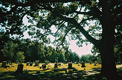 Peace in the cemetery (kevin dooley) Tags: peace cemetery film 35mmfilm 35mm pinegrove newbuffalo michiana