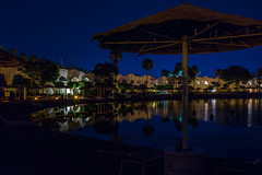 Шарм-июль2018-1003 (podolian62) Tags: egypt sharmelsheikh domina night water palm
