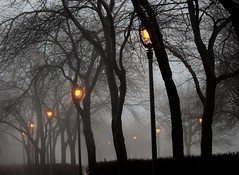 Night And Fog (marylee.agnew) Tags: night fog lights city alone creepy mood atmosphere scary urban street lamp