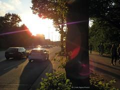 Drive or Walk ? (C.Kalk DigitaLPhotoS) Tags: street strasse strase car auto person driving fahren gehen sunset sonnenuntergang sun sonne sunlight sonnenlicht lensflare tree baum abendstimmung reflektion reflection sunny sonnig outdoor hamburg germany naturallight chasinglight photo photography