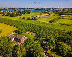 Bommelerwaard - Maas (Robica Photography) Tags: robicaphotography mavicpro drone aerial aerialphotography airphotography landscape meadows river maas bluesky blue sky green nature sunny bommelerwaard