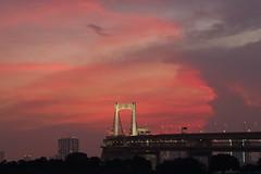 Sunset at Tokyo Rainbow Bridge (seiji2012) Tags: お台場 東京 夕焼け レインボーブリッジ シルエット obaida silhouette rainbowbridge tokyo illuminated ライトアップ
