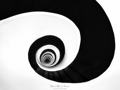 Vertigo (Mimadeo) Tags: staircase spiral step ladder circular climb stairway stair round rotate shape handrail circle curve down up design architecture screw railing perspective twist abstract urban coil snail oval dark highangleview directlybelow black white blackandwhite