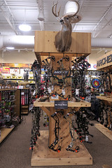 archery display (BarryFackler) Tags: archerydisplay bows bowhunting hunting storedisplay archery deerhead trophy ceiling mounteddeerhead taxidermy targets merchandise lighting indoor scheels villagepointeshoppingcenter sportinggoodsstore store retailstore villagepoint shopping 2018 barryfackler barronfackler omaha omahanebraska midwest omahane nebraska vacation