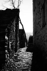 Valle Cannobina #7, 2018. (Livio Burtscher) Tags: white reflections sunlight schwarzweis shadow alley black 35mm ilford manual focus analog relaxed emotional motion walking shadows abstract alternative meaning lonesome unedited original blacknwhite bw monochrome daily scene glance candid fe2 nikon afternoon garden europe architektur gras