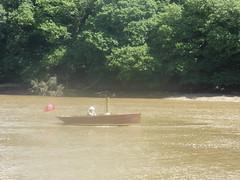 24 June 2018 Calstock (34) (togetherthroughlife) Tags: 2018 june cornwall calstock boat river rivertamar