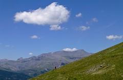 vue sur la cîme Nègre et le mont Mounier (b.four) Tags: montagne montagna mountain cîmenègre montmounier têtedegiarons hautcians alpesmaritimes
