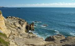 Coastal rock formations (briangeerlings) Tags: landscape oregon coast oregoncoast water ocean pacificocean blue sky rocks sandstone cliff grass waves