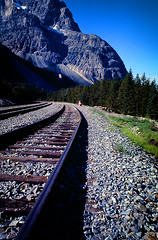 Rails (TCeMedia/Telecide) Tags: moutain track railroad train rock rails cp canadian pacific canada yoho national park trees