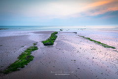 lines (ylemort) Tags: beach nature sea sand coastline landscape sky outdoors blue scenics water nopeople summer beautyinnature sunset cloudsky tranquilscene lowtide seascape island everypixel belgique belgium beautiful canon canon5dmkiv