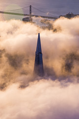 Transamerica San Francisco Fog Sunrise Aerial (tobyharriman) Tags: 2014 above adventure aerial aerialphotographer art artist bay bayarea beautiful california city cityscape clear colorful custom fineart flying fog goldengatebridge helicopter landscape october outdoor photographer photos prints r22 robinson sanfrancisco sanfranciscophotography sf skyline sunrise timelapsepictures tobyharriman travel visit weather unitedstates us
