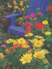 From Deborahann (USA) (AunteyEm/MichelleW) Tags: postcards postcrossing
