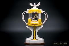 tkm-FootballFeverCup-2 (tankm) Tags: football cup