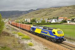 (REGFA251013) Tags: tren train comboio locomotora euro4000 continetal rail azul amarillo pajares leon gijon silla diese adif contenedores