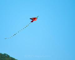Skylne Trip to 金海沙滩 Kites 05 (C & R Driver-Burgess) Tags: beach sea water ocean coast ripples surf kiteboard kitesurf cloud sky blue red green hills horizon spectators