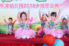 Happy Day Kindergarten Graduation 371 (C & R Driver-Burgess) Tags: stage platform ceremony parent mother father teacher child kids boy girl preschooler small little young pretty sing dance celebrate pink dress skirt red white blue bowtie 台 爸爸 妈妈 父亲 母亲 父母 儿子 女儿 孩子 幼儿 粉红色的 衬衫 短裤 篮球 跳舞 唱歌 漂亮 帅 好看 小 people gauzy compere 打篮球 短裤子 黑 红 tamronspaf2875mmf28xrdildasphericalif 6yrsold text writing sign balloons ballet gloves tights stretch group sit lean cup reach 同学 班 tutu