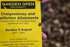 Scotland's Gardens Craigintinney Telferton July 2018 -22 (Philip Gillespie) Tags: edinburgh scotland craigentinny telferton portobello summer gardens park open plants fruit vegetables knitting insects animals trees people men women kids boys girls sky sun clouds colours green yellow blue white black red purple orange rainbow butterflies bees wasp honey pollen water canon 5dsr photography color path walk urban streets sheds plots flags bunting scotlands 2018 tyres bright colourful wet lady birds bugs signs houses