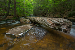 Log & a Rock in the Creek (Ken Krach Photography) Tags: rickettsglen pennsylvania