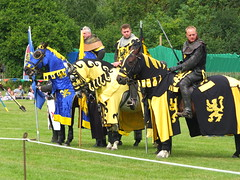 DSCF3717 (SierPinskiA) Tags: ruffordabbeycountrypark rufford knightsofnottingham fujixs1 jousting medieval horse knights goldeneagle falcon