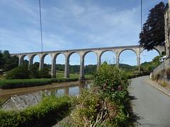 24 June 2018 Calstock (5) (togetherthroughlife) Tags: 2018 june cornwall calstock viaduct river rivertamar